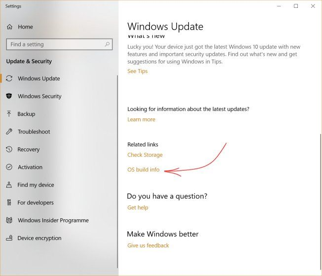 how to manually update windows 10 - OS build